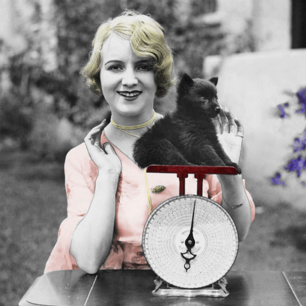 Blonde 1950s woman with small dog on scale