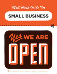 Mail Chimp Guide for Small Business Cover