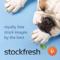 stockfresh_125x125_v2
