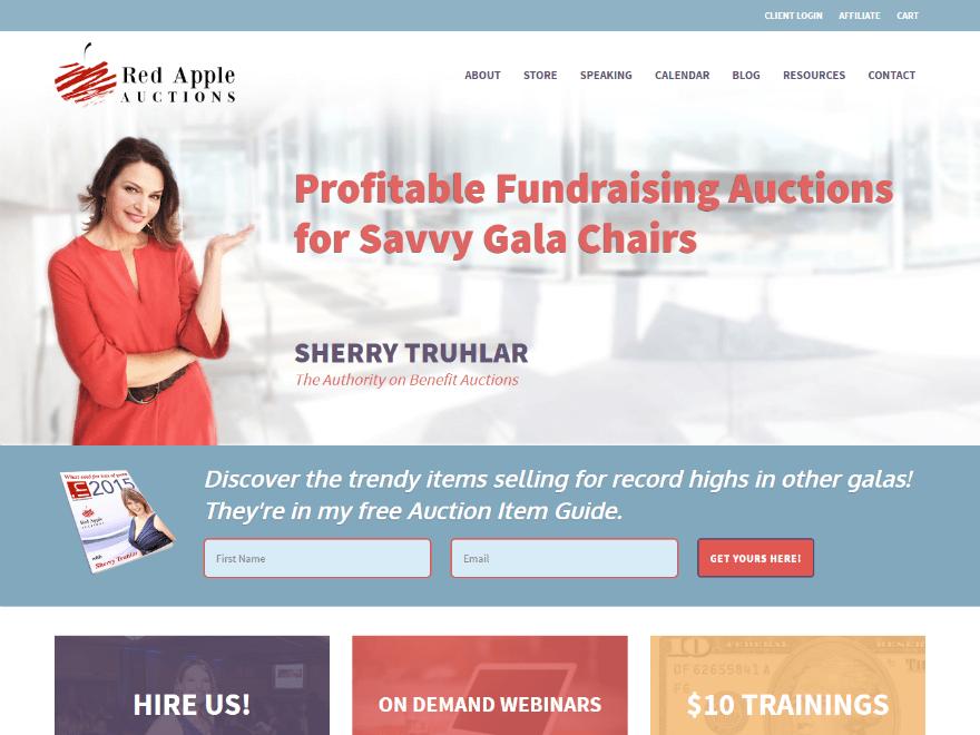 Nonprofit Auctioneer WordPress Website