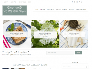 DIY Blogger WordPress Website Design